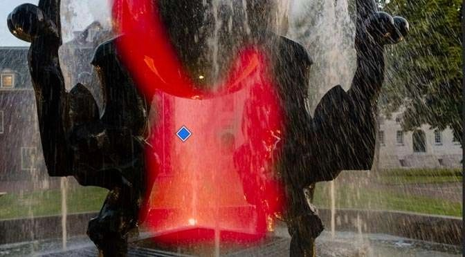 Een foto selectief bewerken in Lighroom Mobile