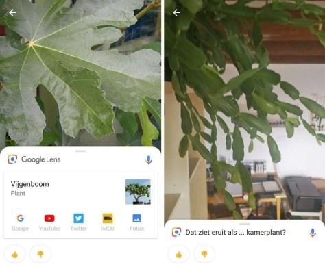 Google Lens beschikbaar in de Play Store