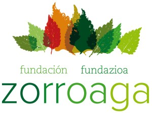 fundacion zorroaga color