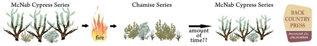 Example of how a vegetation shift could occur in a fire-dependent cypress/chaparral ecosystem.
