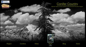 CONIFER COUNTRY is the companion website to Michael's book which explores the biodiversity of the Klamath Mountains through the eyes of conifers.