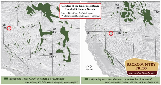 Range maps for whitebark and limber pine in western North America with and emphasis on the Pine Forest Range. Notice how isolated these stands of trees are.