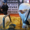 les-revendication-des-eleveurs-bovins-s-affichent-au-salon-international-de-l-agriculture