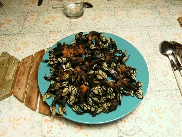 Mejores bares donde comer percebes gallegos