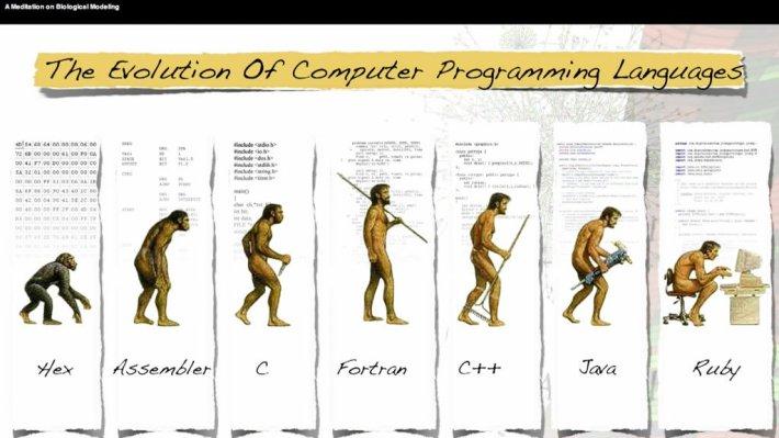 مراحل تطور كورسات برمجة