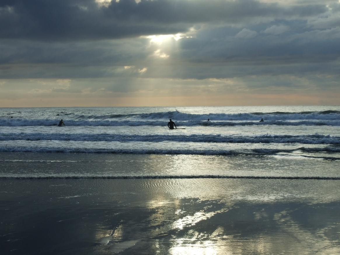 surfing devon
