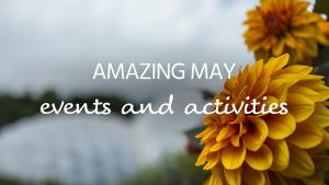 May events 2019