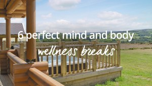 wellness breaks