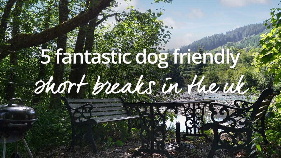 Dog friendly weekend breaks in the UK