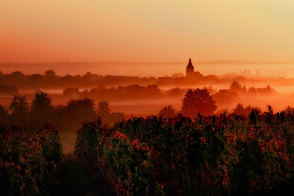 International Garden Festival, Loire Valley – April to November