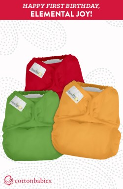 Our budget-friendly cloth diapers, Elemental Joy, are celebrating their first birthday! Learn more about how you can save money, prevent waste and look cool while doing it!