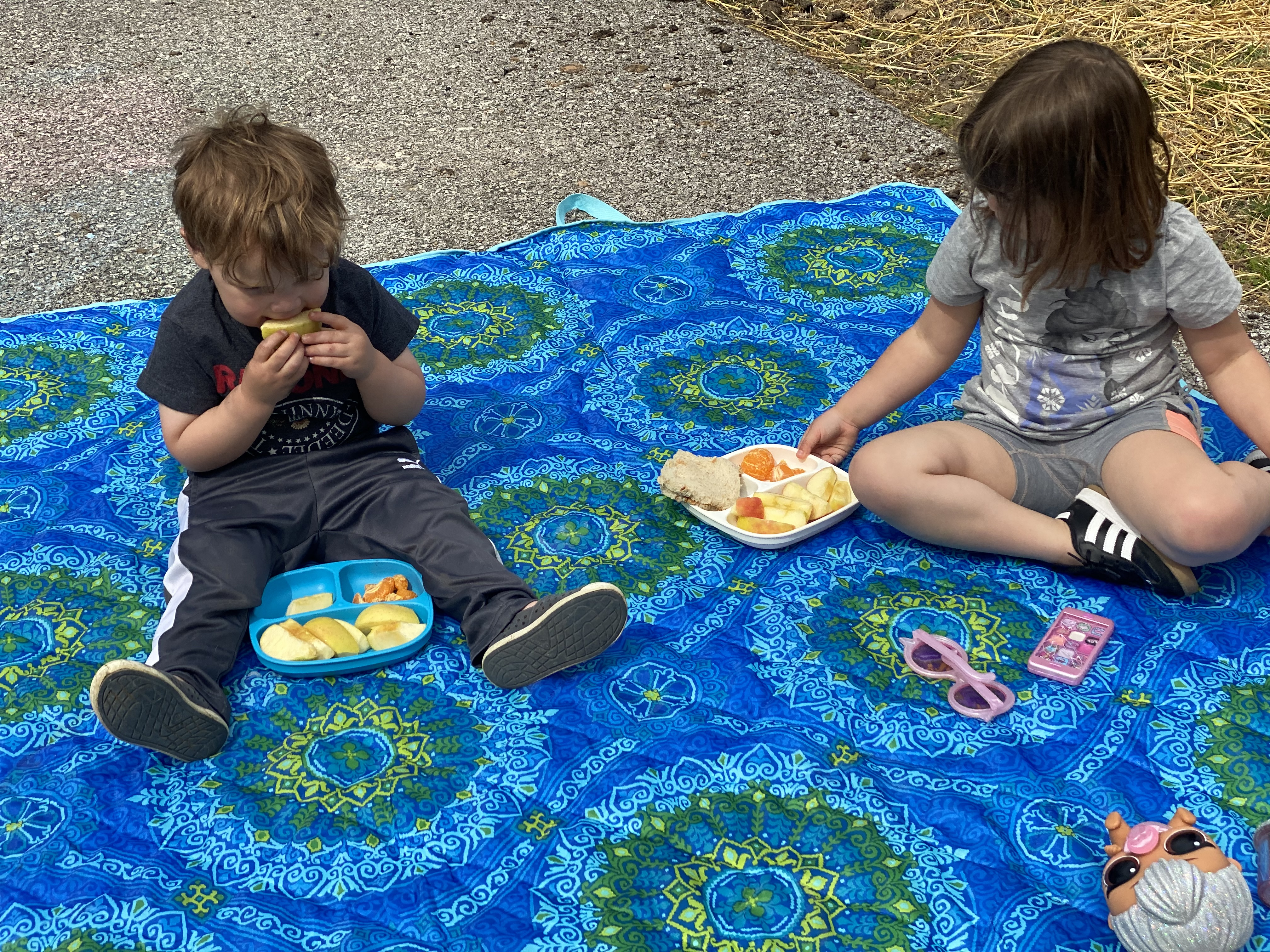 Driveway picnic