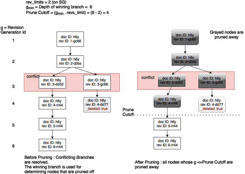 Pruning in resolved conflicting revisions
