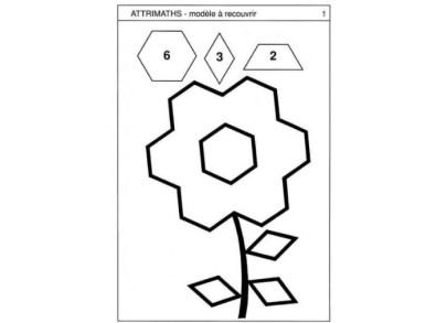 attrimaths-modele