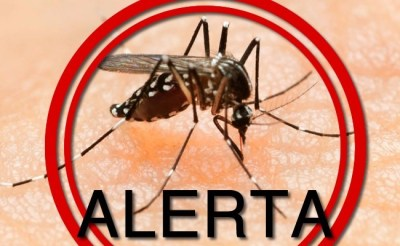 O que é o Zika vírus?