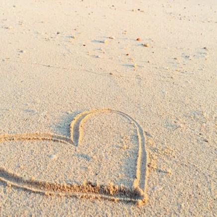 sun-kissed-digital-process-creative-memories5.jpg