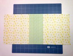 Mini-Scrapbook-Album-Simply-Sunshine-Creative-Memories9