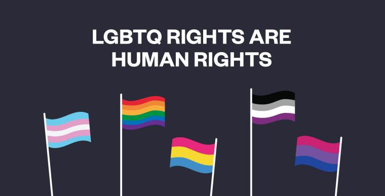 LGBTQ Rights are Human rights written in white on a black background with the Pride, transgender, bisexual, and asexual flags underneath it
