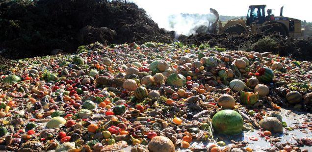 Siete maneras de desperdiciar alimentos