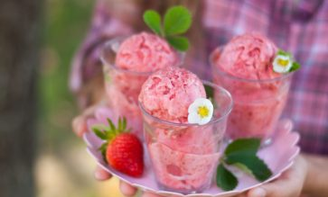 recette extracteur de jus glaces et sorbets kuvings