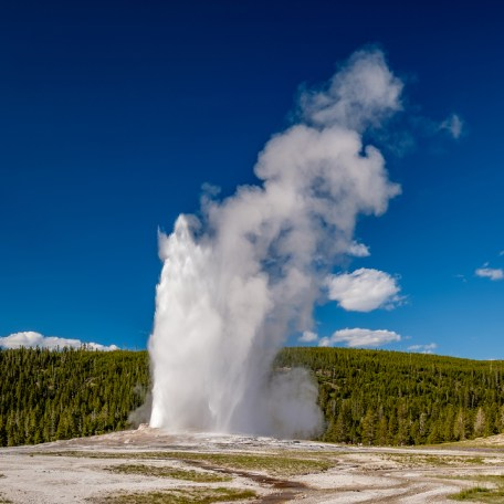 Witness Old Faithful at Yellowstone National Park on U. S. National Parks tours