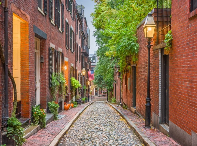 WANDER THROUGH ACORN STREET