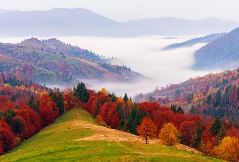 Autumn in Ukraine