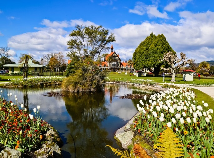 Get introduced with the Culture in Rotorua