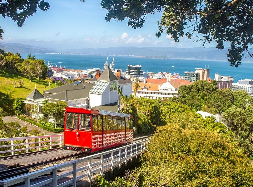 Relish the Luxury at Wellington