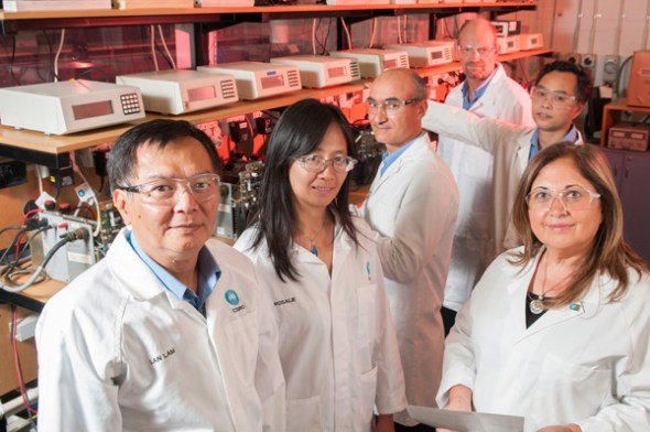 Dr Lan Lam (far left) and some of the team members that work on the UltraBattery in the laboratories in Clayton, Melbourne.