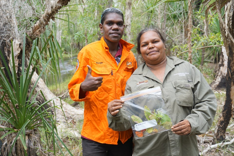 Two rangers holding up a plant sample