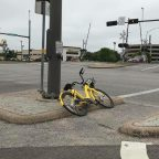 What to do when Ofo becomes an oh no