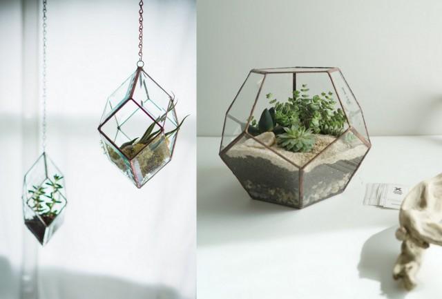 Les Terrariums La Tendance Design Dintrieur Cuboak