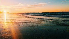 beach_700x400