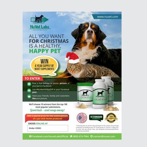 Pet Photo Contest Flyer