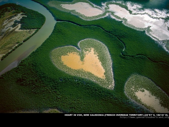 Yann Arthus Bertrand - Le coeur de Voh