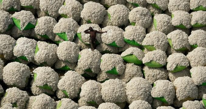 coton-arthus-bertrand-754x400