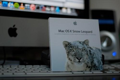 Snow-Leopard-Boite
