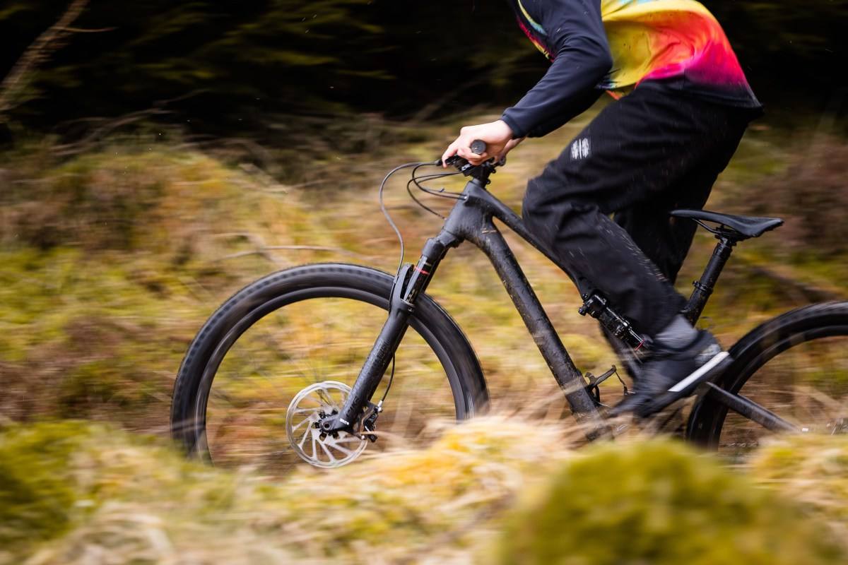 Specialized Stumpjumper 2019 Review - St Comp Carbon 29