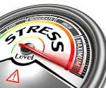 Holiday Stress -
