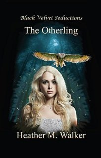 mediakit_bookcover_theotherling