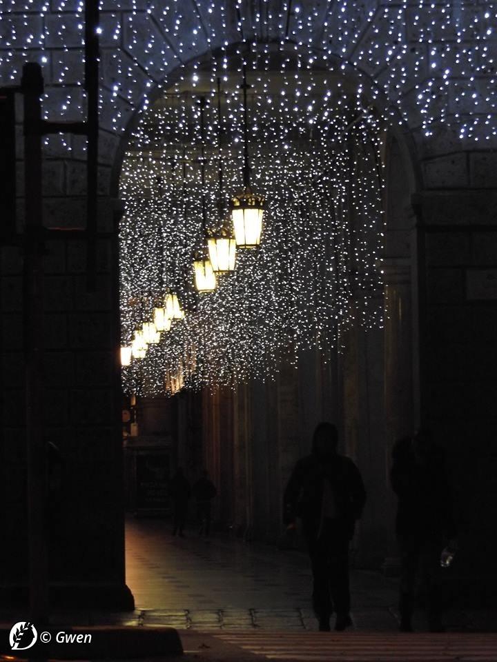 """Dantebus - """"Verso Natale"""" Gwen"""