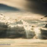 "Dantebus - ""Sky"" Elisabetta Rizzo"