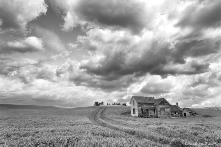Abandoned House Landscape, Palouse