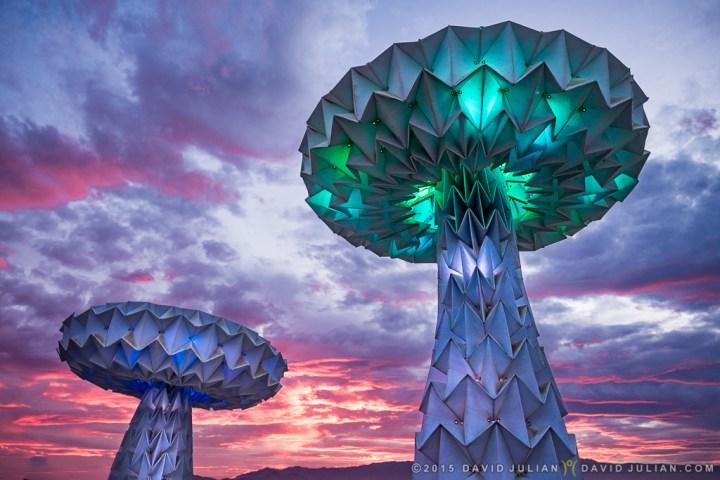 Shroomen Lumen, by Foldhaus