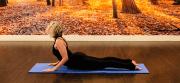 The 21 Day Yoga Challenge