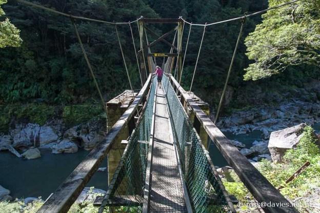 Ngakawau River - Charming Creek Walkway