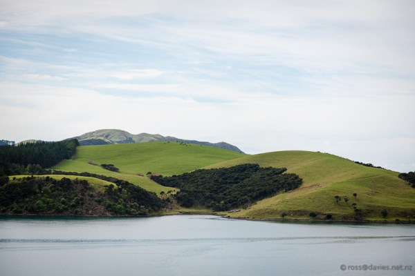 View across Te Puna Inlet from Akeake/Tareha Point lookout