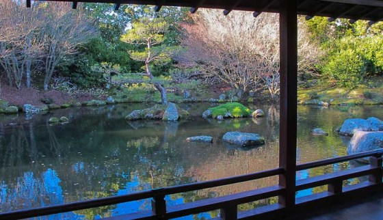 Japanese Garden of Contemplation
