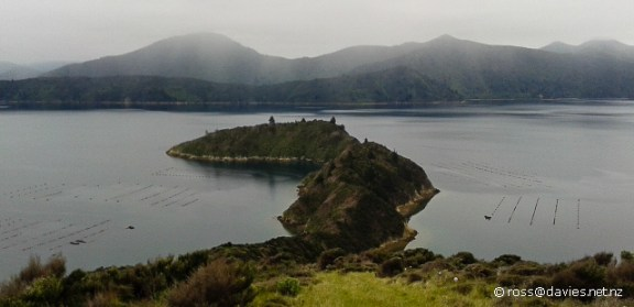Te Puraka Point Marlborough Sounds